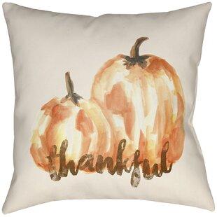 Elser Indoor/Outdoor Throw Pillow