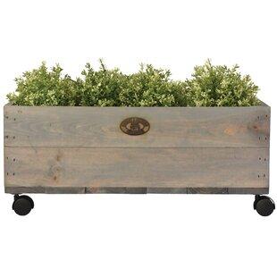 Esscherts Garden Wooden Planter Box Image