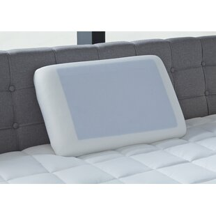 Memory Foam Standard Pillow (Set of 2)