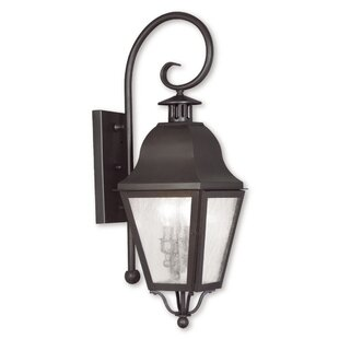 Goodhue Outdoor Wall Lantern by Alcott Hill