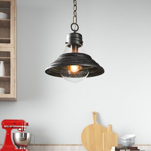 Snyder 1-Light Cone Pendant by Wrought Studio