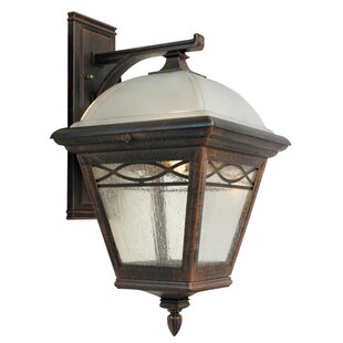 Brentwood 1-Light Outdoor Wall lantern by Special Lite Products