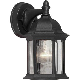 Delphia 1-Light Outdoor Wall Lantern