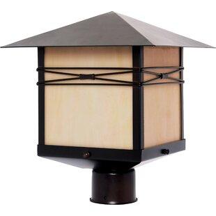 Best Reviews Firebaugh Outdoor 1-Light Lantern Head By Loon Peak
