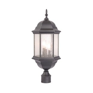 Charlton Home Pruitt Outdoor 3-Light Lantern Head