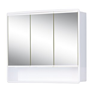 Federico 58cm X 49.5cm Surface Mount Mirror Cabinet By 17 Stories