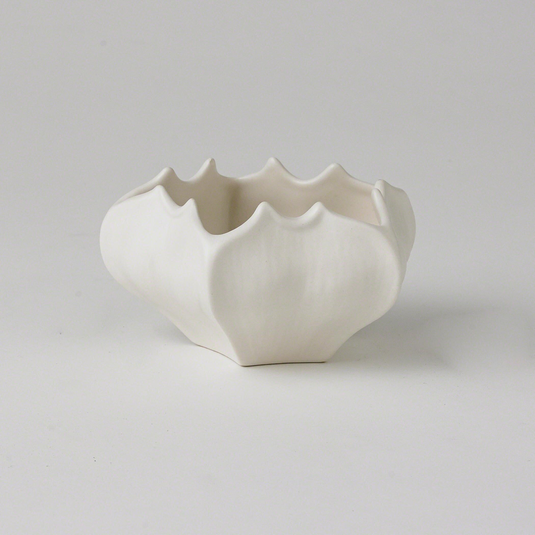 Studio A Star Fruit Ceramic Abstract Farmhouse Decorative Bowl In Matte White Reviews Wayfair