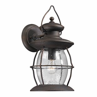 Surana 1-Light Outdoor Wall Lantern
