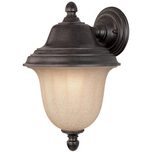 Read Reviews Teminot 1-Light Outdoor Sconce By Bloomsbury Market