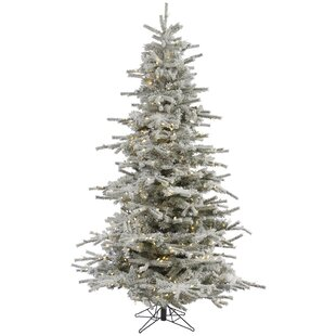 flocked sierra 12 white fir artificial christmas tree with 1850 led white lights with stand