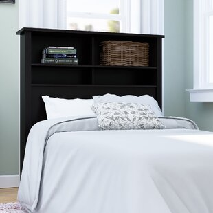 https://secure.img1-fg.wfcdn.com/im/65883568/resize-h310-w310%5Ecompr-r85/3983/39836895/rossford-twin-bookcase-headboard.jpg