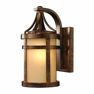 Bloomsbury Market Crespin 1-Light Outdoor Wall Lantern