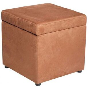 Andover Mills Whiting Storage Ottoman