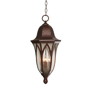 Charlbury 4-Light Outdoor Hanging Lantern