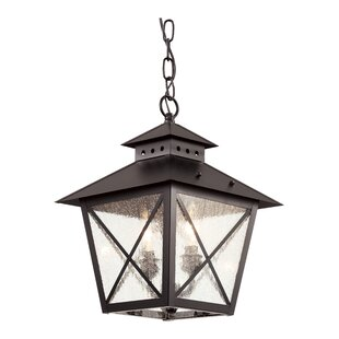 TransGlobe Lighting Chimney Vented 2-Light Outdoor Hanging Lantern