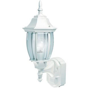 Bargain Lakeside 1-Light Contemporary Outdoor Sconce By Three Posts