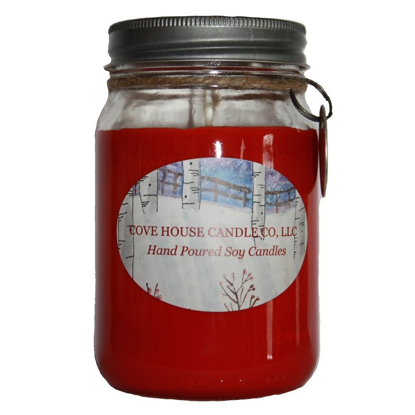 Covehousecandleco Hot Cinnamon Scented Jar Candle Wayfair