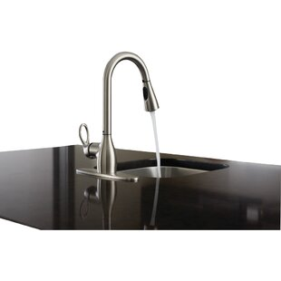 Moen Kleo Single Handle Kitchen Faucet with Reflex™ and Duralock™