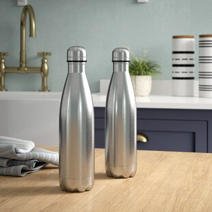 Olveston 17 oz. Stainless Steel Water Bottle (Set of 2)