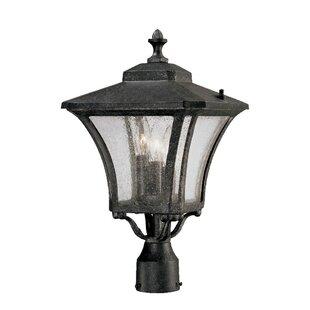 Bloomsbury Market Herald Outdoor 3-Light Lantern Head