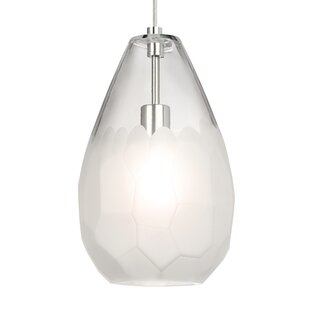 Ivy Bronx Grande 1-Light Teardrop Pendant