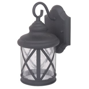 Affordable Ruggerio 1-Light Outdoor Wall Lantern By Alcott Hill
