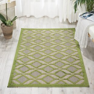 Blane Green Indoor/Outdoor Area Rug