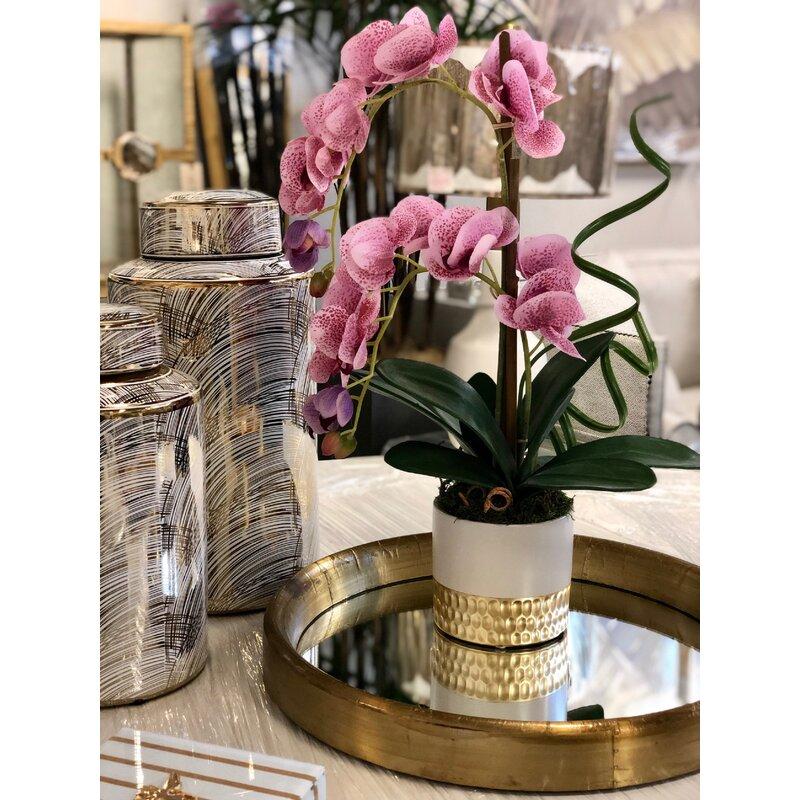 floral home decor orchid floral design wayfair.htm mercer41 phalaenopsis orchids floral arrangement in vase wayfair  phalaenopsis orchids floral arrangement