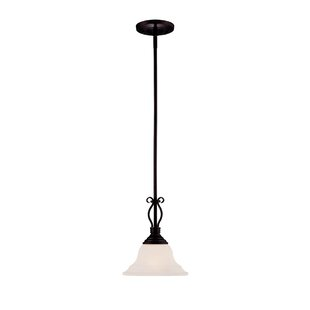 Fleur De Lis Living Irvington 1-Light Con..