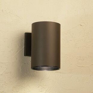 Suri 1-Light Outdoor Sconce