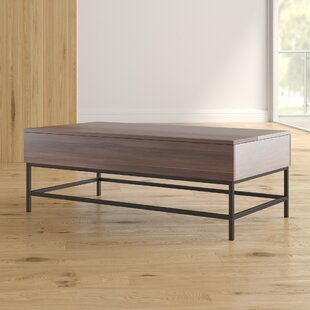 Reda Lift Top Coffee Table with Storage