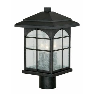 Charlton Home Feeley Outdoor 3-Light Lantern Head
