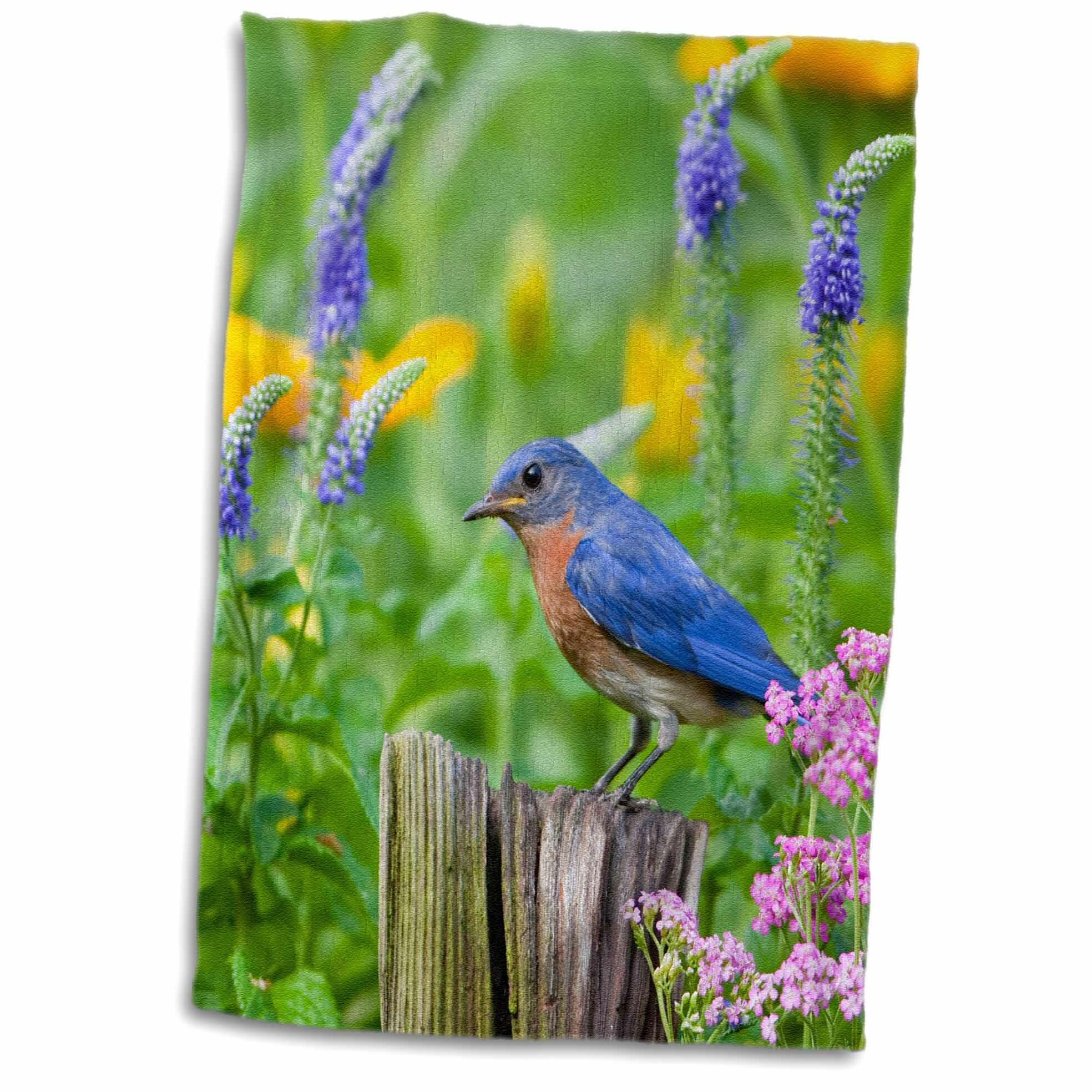 East Urban Home Godfrey Eastern Bluebird On Fence Post In Flower Garden Marion Co Il Tea Towel Wayfair