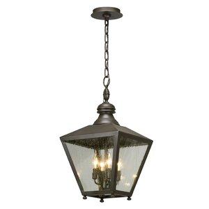 Sybil 4-Light Outdoor Hanging lantern