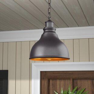 Laurel Foundry Modern Farmhouse Lavardin 1-Light Outdoor Hanging Lantern