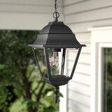 Ledbetter 1 -Bulb 12.5'' H Outdoor Hanging Lantern
