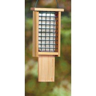 Laurent Suet Bird Feeder By Sol 72 Outdoor
