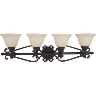 Amelia 4-Light Vanity Light by Darby Home Co