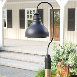 Laurel Foundry Modern Farmhouse Lavardin 1-Light Outdoor Lantern Head