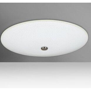 Great Price Howell 2-Light Outdoor Chrome Flush Mount By Orren Ellis