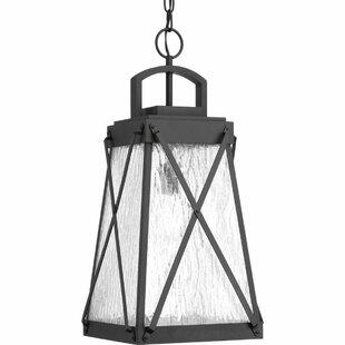 Gracie Oaks Keansburg 1-Light Outdoor Hanging Lantern