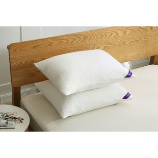 Edna Plush Down and Feathers Bed Pillow (Set of 2) ByAlwyn Home