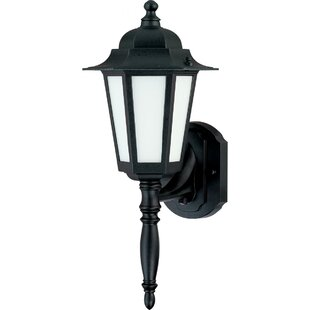 Deals Mayer 1-Light Outdoor Wall Lantern By Alcott Hill