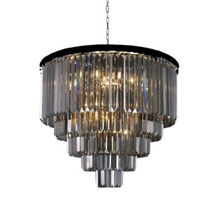 Losey 22-Light Chandelier by Ivy Bronx