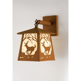 Order 1-Light Outdoor Wall Lantern By Meyda Tiffany