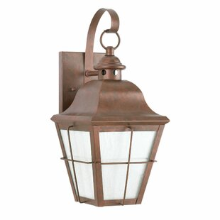 Longshore Tides Gainsborough 2-Light Outdoor Wall Lantern