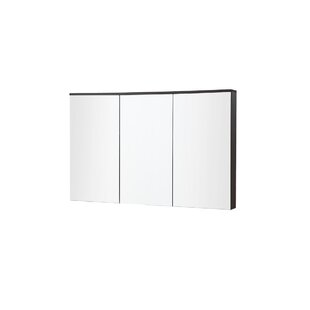 In Series 47.2 X 25.6 Surface Mount Medicine Cabinet by InFurniture