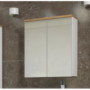 Bali 60 Cm X 70 Cm Surface Mount Mirror Cabinet By Belfry Bathroom