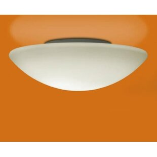 Illuminating Experiences Janeiro -Light LED Flush Mount