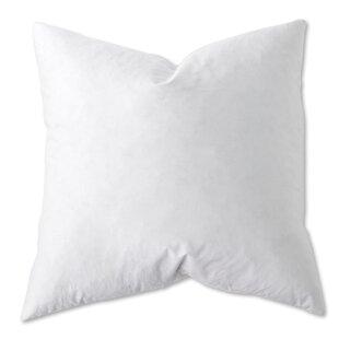 Natural Cotton Euro Pillow (Set of 2)